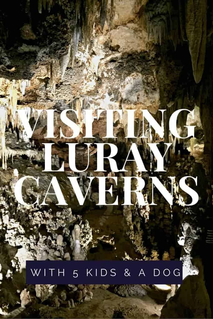 Luray Caverns, in Virginia's Shenandoah Valley, is an amazing family travel destination with stalactites and stalagmites aplenty. Bonus: They're dog-friendly! Come explore the caverns and the green trees on your next road trip!