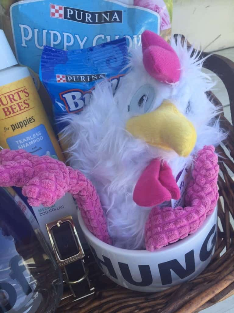 Thanksgiving Gift Baskets for Dogs