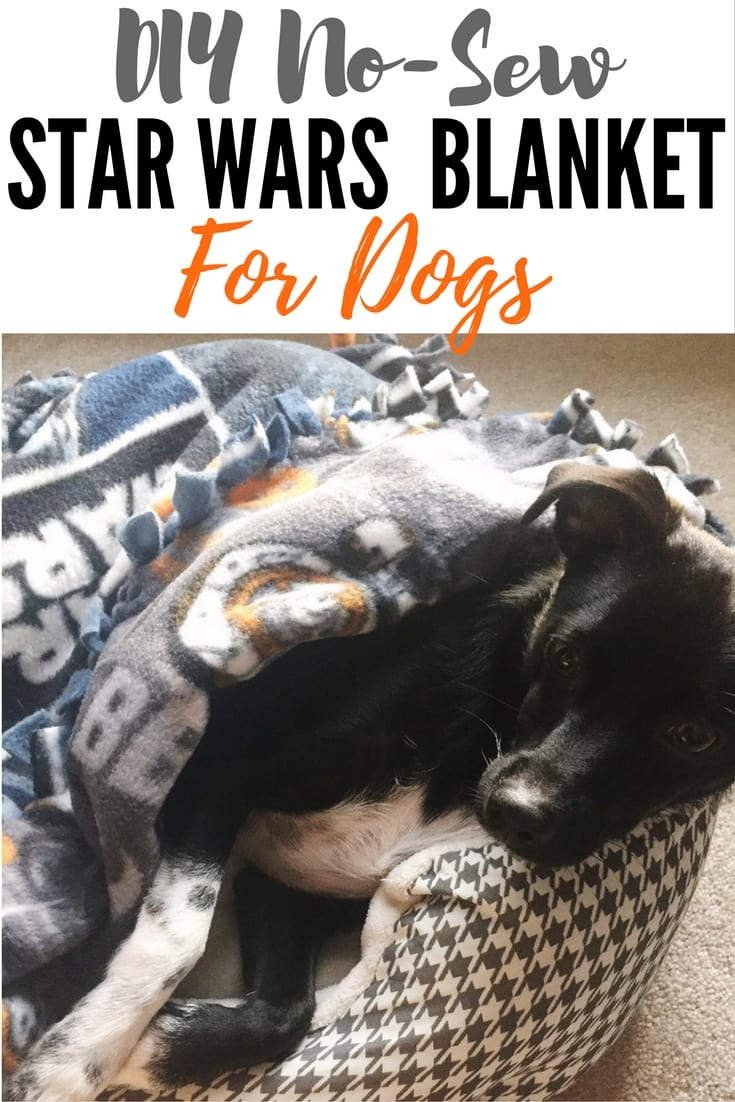 DIY No-Sew Star Wars Blanket for Dogs or Humans. This DIY BB-8 and Darth Vader blanket takes less than 30 minutes to make! It's a great kids craft,too, especially if the force is strong with your littles. Perfect gift for birthdays and Christmas!