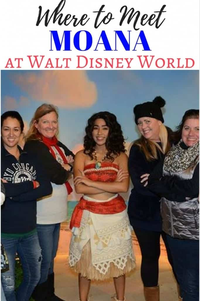 Here are tips on where and how to meet Moana at Walt Disney World! Find Moana at Disney's Hollywood Studios. One of the best Disney character meet and greets ever!