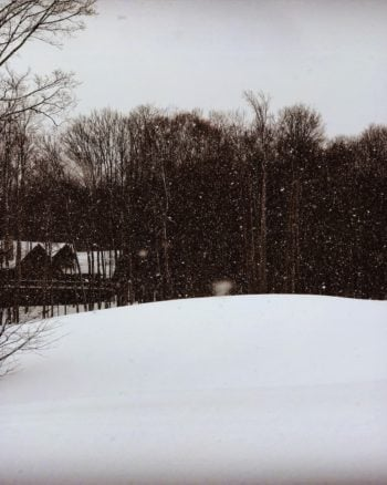 A gorgeous snow view along the cross-country skiiing trail at Shanty Creek Resort.