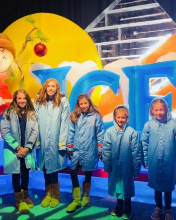 Discounts on Gaylord National ICE!