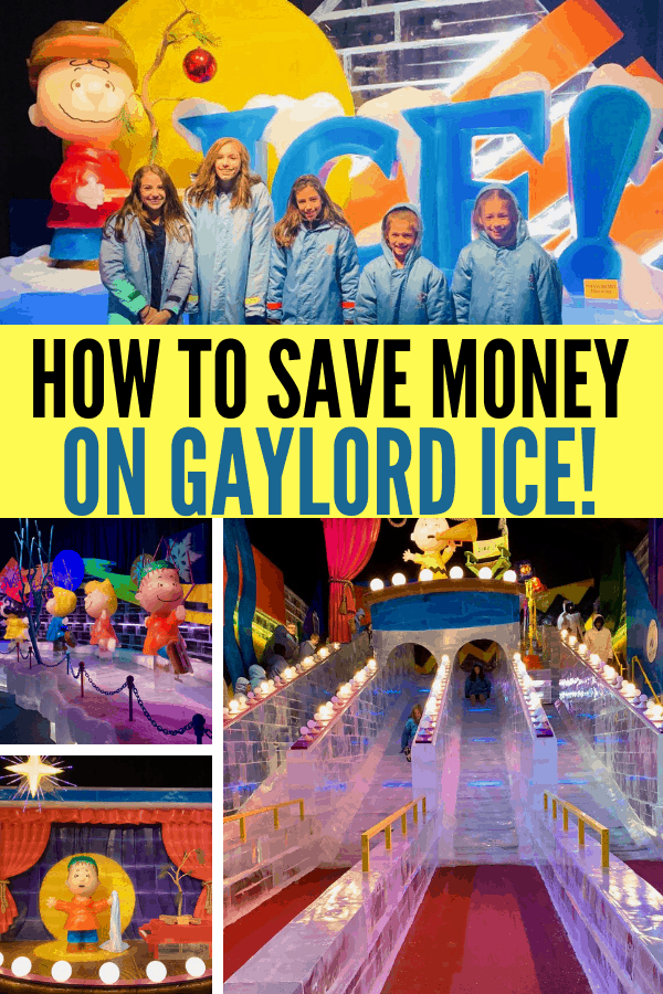 Here's how you can save money on Gaylord ICE! Is ICE! at the Gaylord worth it? Save some cash on this and other family friendly activities in your area with Certifikid. Here's how you can make family memories without blowing the budget.