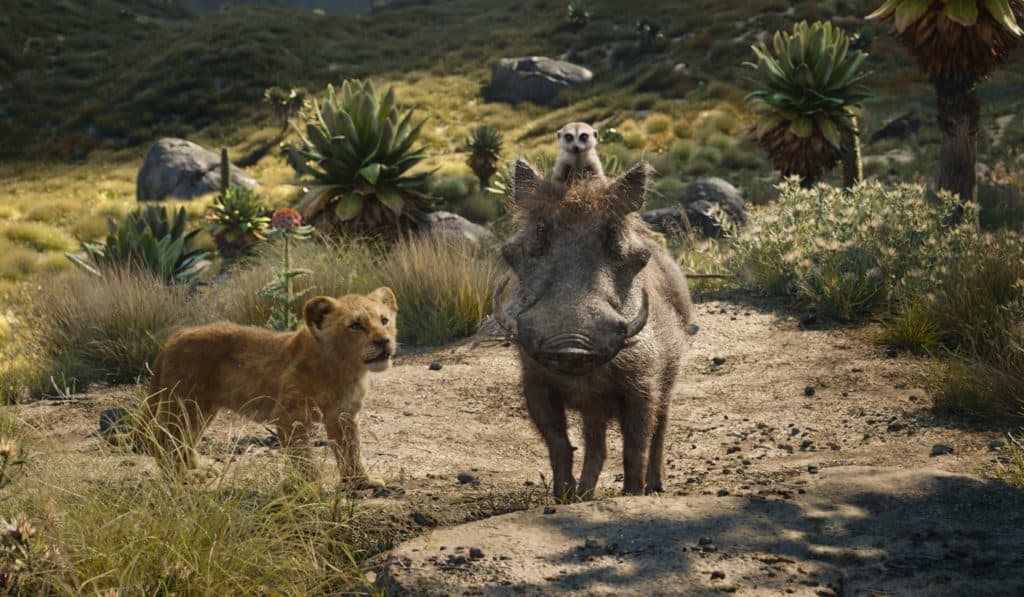 Pumbaa and Timon bring the humor and funny to The Lion King.