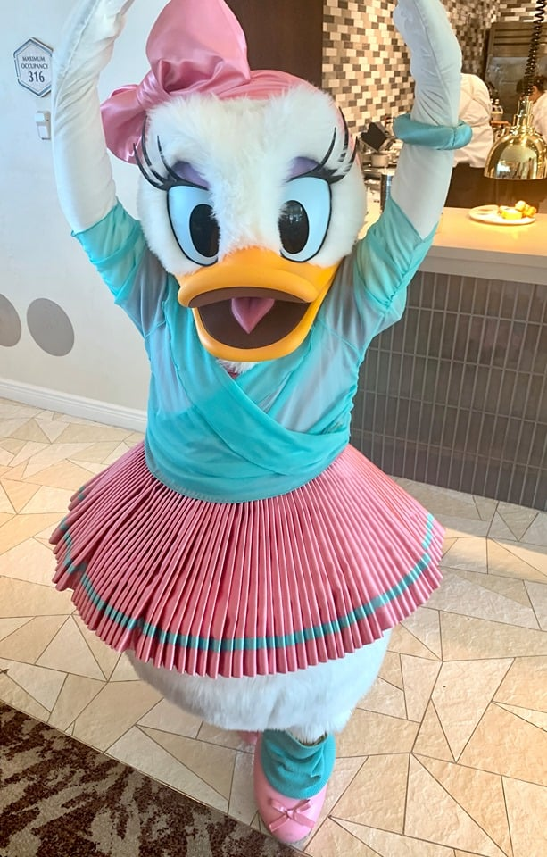 Daisy Duck at Riviera Resort Character Breakfast