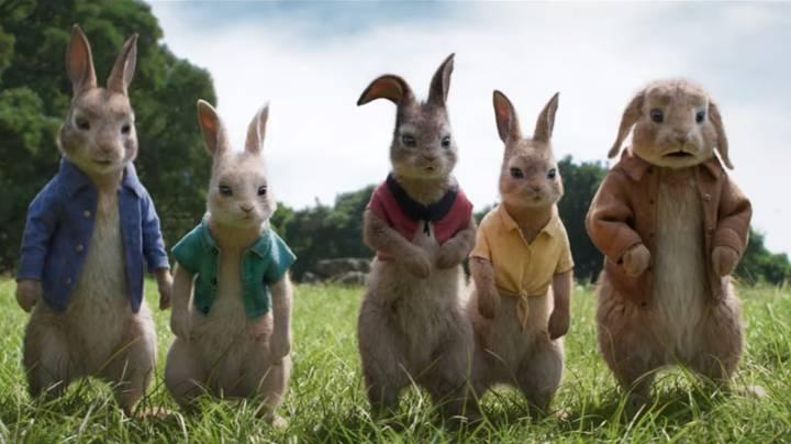 Peter Rabbit 2 Delayed due to Coronavirus